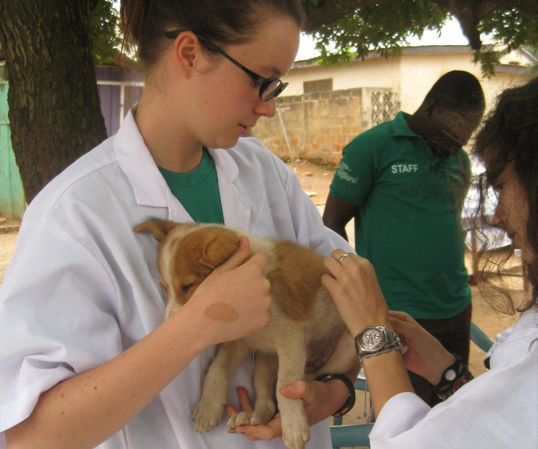 Two Veterinary Medicine interns examine a puppy during an outreach in rural Ghana.